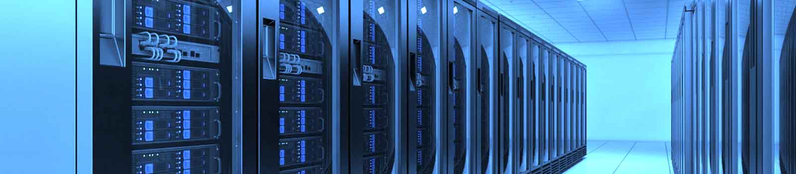 Web Hosting and IT Services